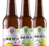 Kombucha – Koala Mix smaków 330ml