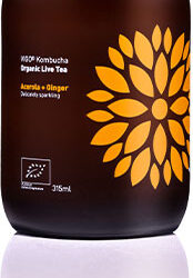 Vigo Kombucha organiczna 315ml mix smaków do wyboru